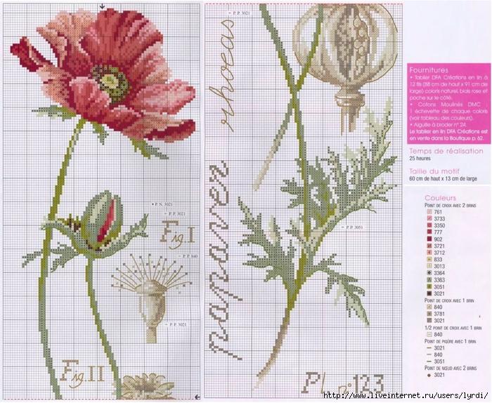 Схемы вышивки крестом серия ботаника