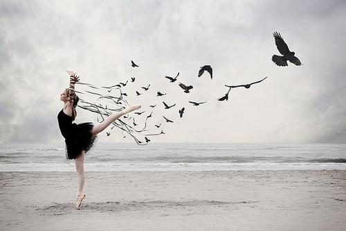 ballet,ballerina,people,makesme,w,o,n,d,e,r,tumblr,com,free,dreams-7bc94c5ef73437ab15f9017422b5cc67_h (500x333, 39Kb)