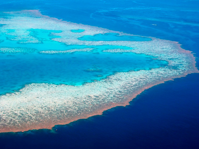 13. Great Barrier Reef 4 (700x525, 446kb)