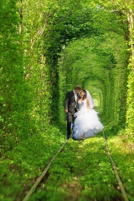 17. Túnel de amor em Klevan (468x700, 459Kb)