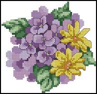 3971977_JCD_1226_Purple_Posey (195x189, 42Kb)