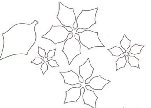 Цветок пуансетии своими руками