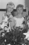 Превью Весення неделя добра 2014 (ДМВО)-3 (305x463, 49Kb)