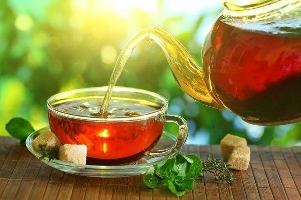 чай (500x350, 41Kb)