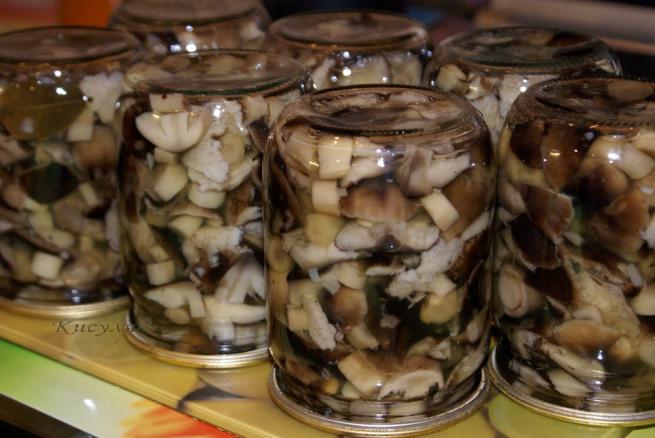 Маринованные белые грибы заготовка на зиму