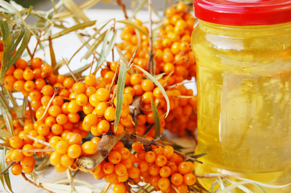 3740351_seabuckthorn_and_honey_600 (600x399, 300Kb)