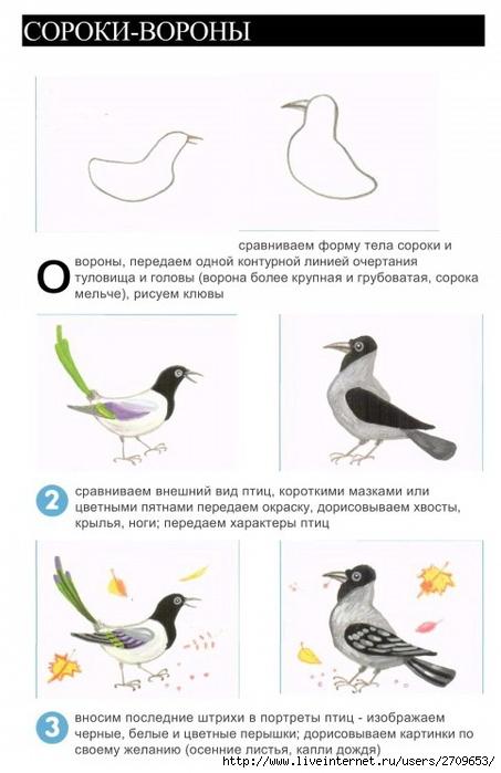 Nashi ptici_4 (453x700, 162Kb)