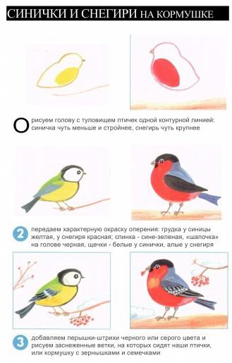 Nashi ptici_14 (329x515, 136Kb)