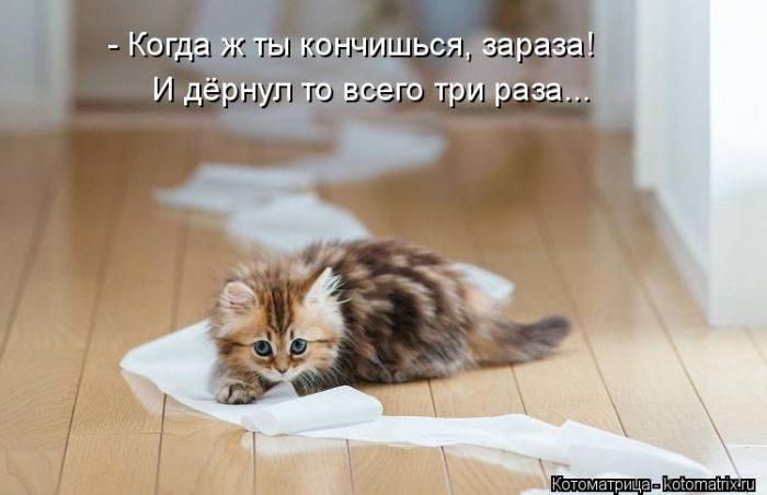 1412530423_13-www.radionetplus.ru (700x452, 115Kb)