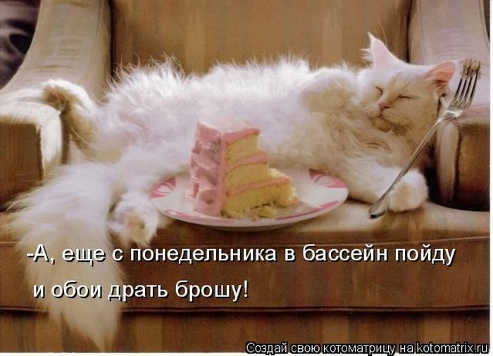 1412530479_15-www.radionetplus.ru (700x506, 172Kb)