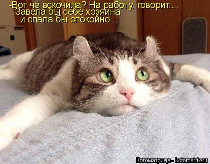 1412530483_7-www.radionetplus.ru (700x546, 214Kb)