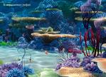 ������ в коралловых рифах (700x506, 519Kb)