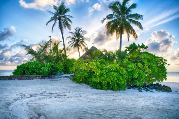 Мальдивы-22-600x400 (600x400, 350Kb)