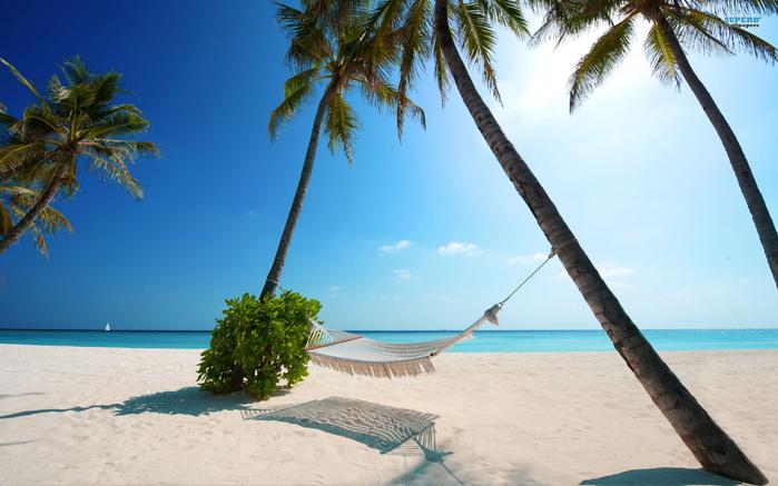 maldivi-maldives_1920x1200_2a716 (700x437, 330Kb)