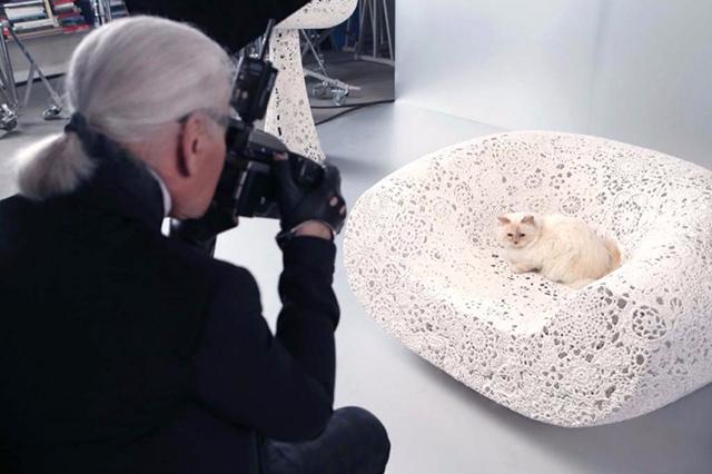кошка лагерфельда 3 (640x426, 233Kb)