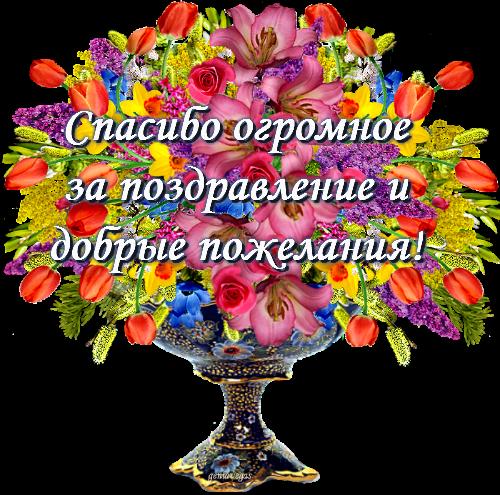 Огромное спасибо друзья мои за поздравления