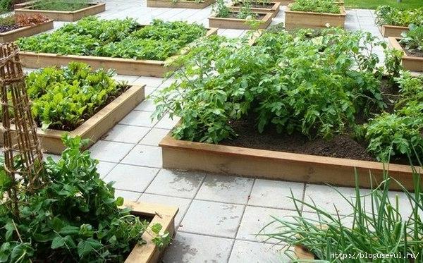 средства в помощь садоводам и огородникам
