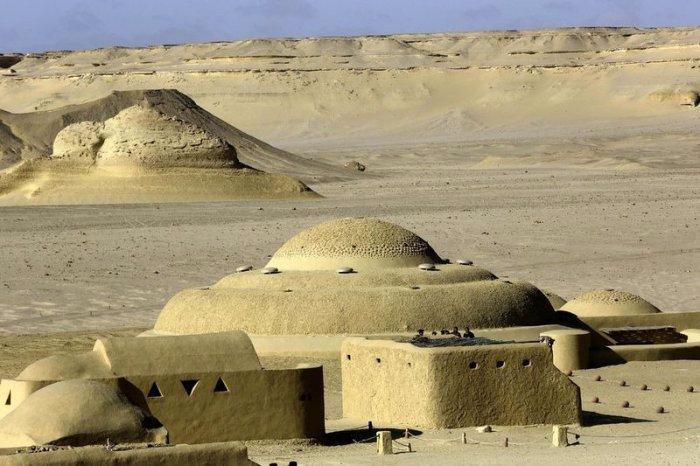 музей ископаемых животных в египете 3 (700x466, 268Kb)