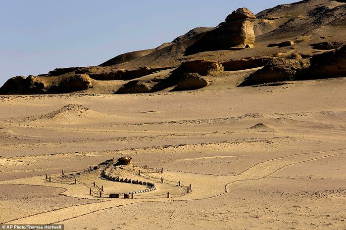 музей ископаемых животных в египете 9 (700x465, 422Kb)