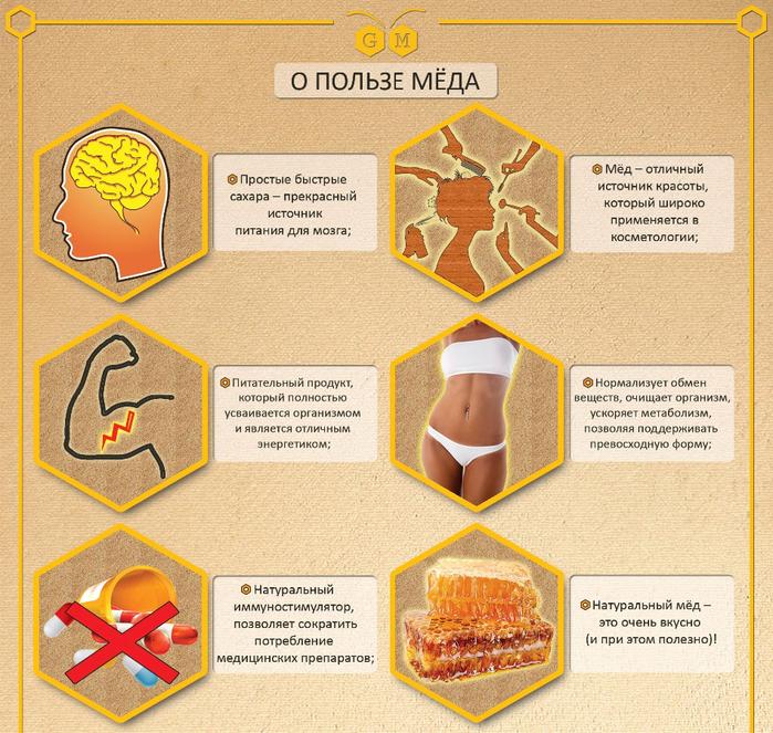 Infografika_Gorameda2 (700x663, 652Kb)