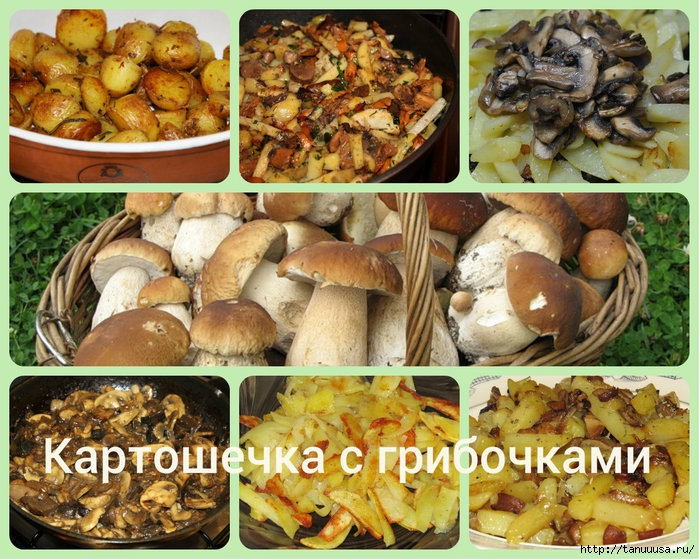 Картошка с грибами1 (700x560, 341Kb)