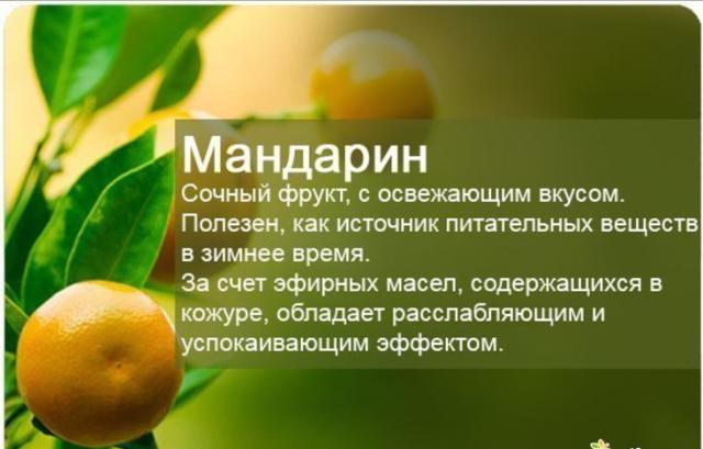 0_1b2f20_cd98b24_SlM (640x409, 330Kb)