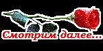 С красной розой (150x75, 13Kb)