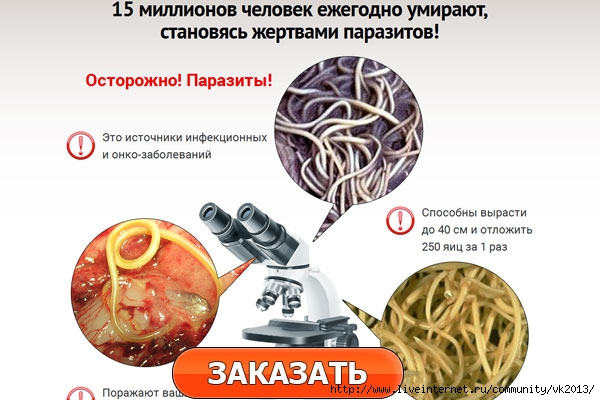 нежданные гости. паразиты в нашем теле./5051374_iO61lc3 (600x400, 145Kb)