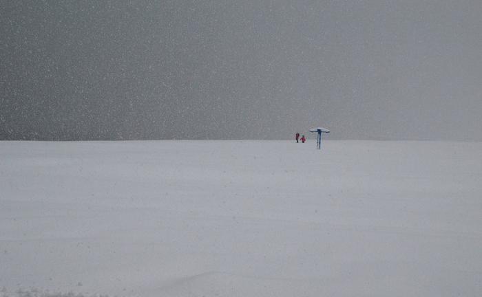 снег в батуми (700x432, 247Kb)