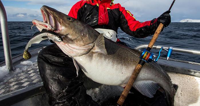 видео ловля рыбы на белом море