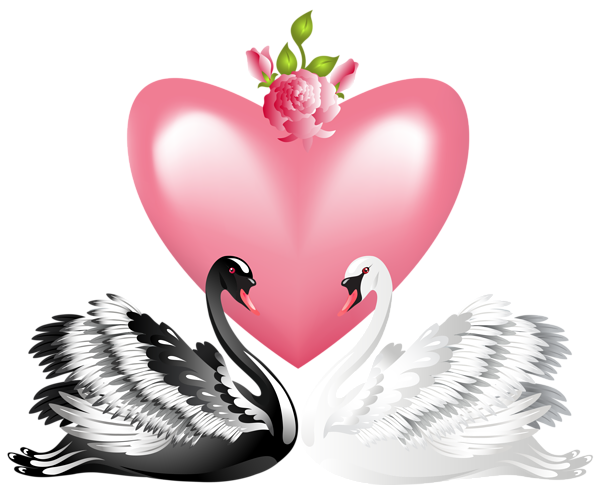 3350917_Valentines_Day_Love_Swans_Transparent_PNG_Clip_Art_Image (600x485, 190Kb)