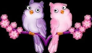 Bird-Image_78 (295x169, 79Kb)