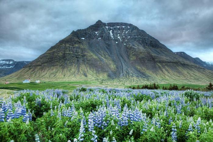 Iceland07-800x533 (700x466, 414Kb)
