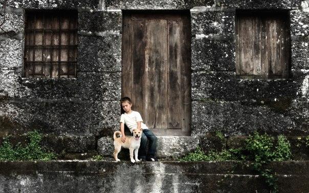 boy&dog (604x377, 86Kb)