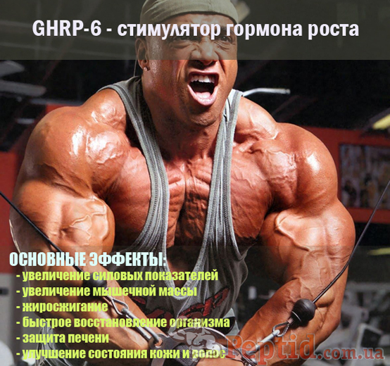 ghrp-6 (554x520, 309Kb)