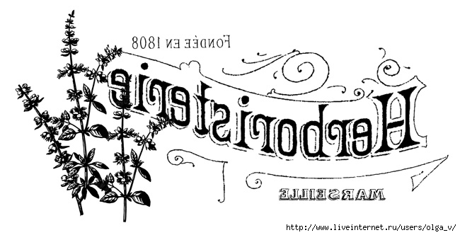 french_herb_shop_rev_Graphi (650x332, 116Kb)