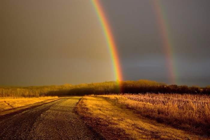 media_rainbow01 (700x465, 205Kb)
