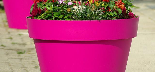 4085414_flowerpot640x300 (640x300, 46Kb)