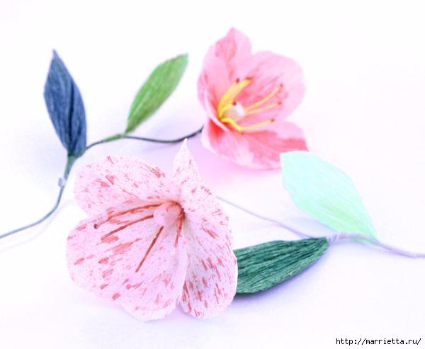 Розовые цветы - МАКИ из гофрированной бумаги (1) (600x493, 93Kb)