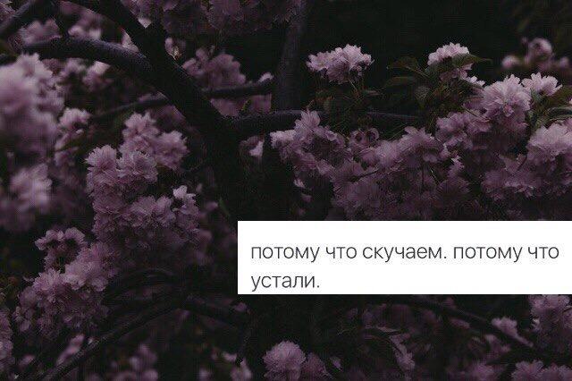 IMG_3788 (640x426, 63Kb)