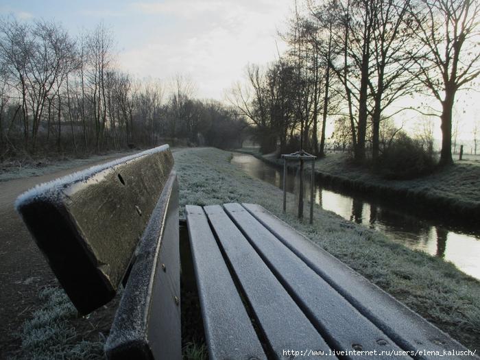 Februar Frost 011 (700x525, 357Kb)