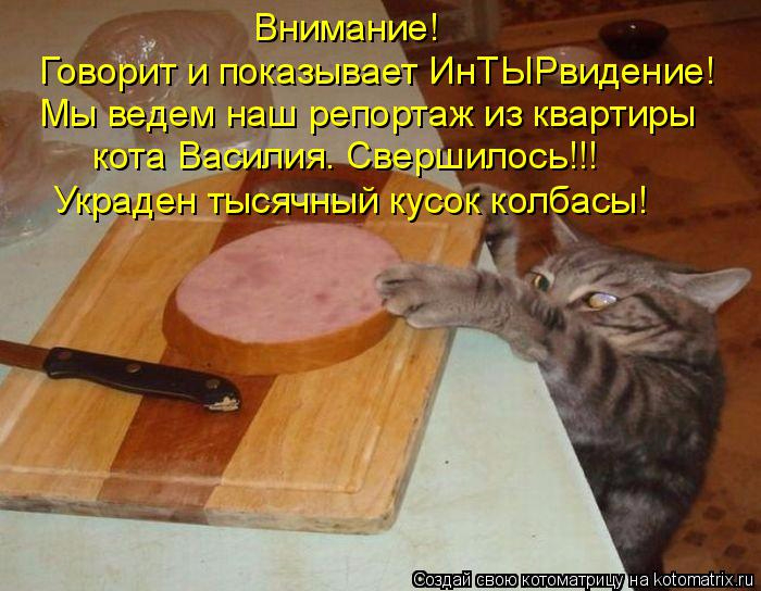 kotomatritsa_Q_ (700x544, 369Kb)