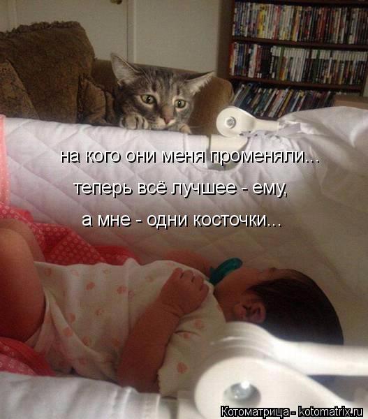 kotomatritsa_vL (527x600, 216Kb)