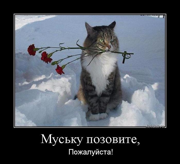 hotdem_ru_099067435401529494041 (700x638, 264Kb)