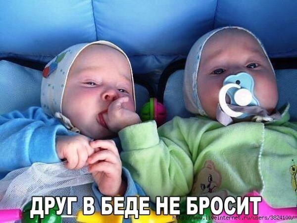 smeshnie_kartinki_144276356847 (600x450, 143Kb)