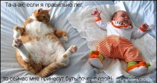 smeshnie_kartinki_133218278319032012 (500x264, 86Kb)