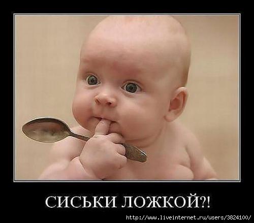 smeshnie_kartinki_133477533618042012 (500x439, 68Kb)