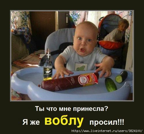smeshnie_kartinki_133797671626052012 (500x463, 95Kb)