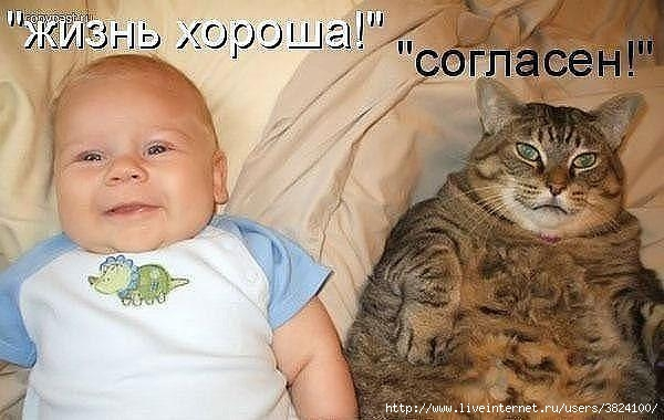 smeshnie_kartinki_1351371432281020121051 (600x380, 129Kb)