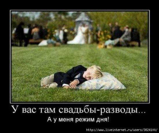 smeshnie_kartinki_135678475029122012505 (550x459, 113Kb)